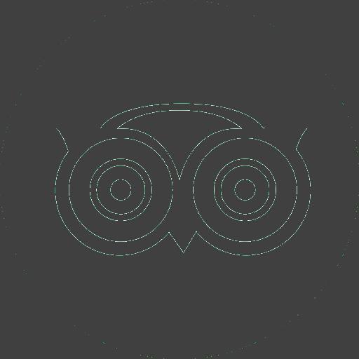 Logo tripadviser